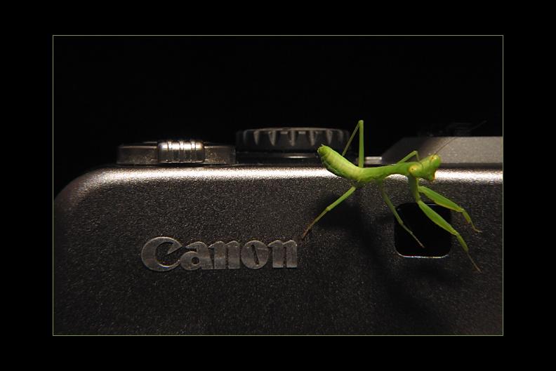 IMAGE: http://www.kleptography.com/dl/fm/canon_mantis640b.jpg