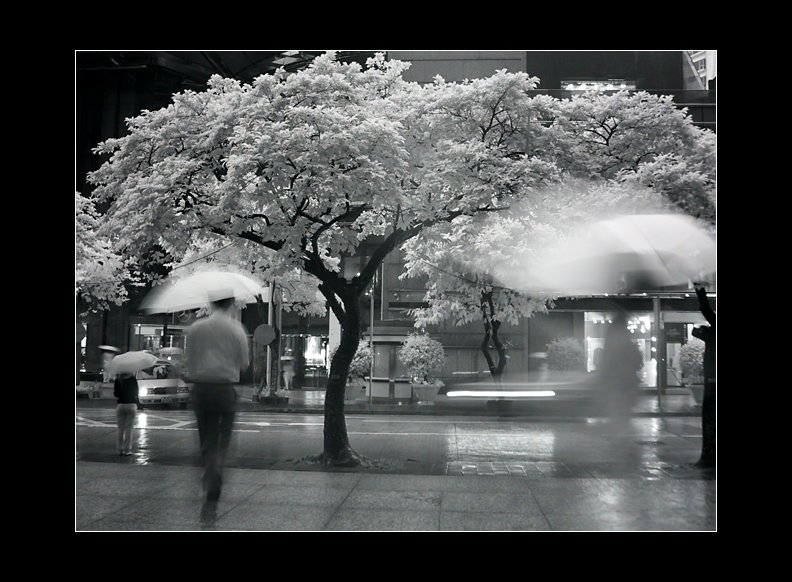 IMAGE: http://www.kleptography.com/dl/fm/rainy_thursday.jpg